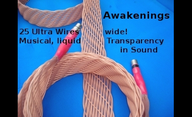 Awakenings 25 wire interconnects